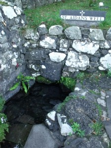 St.Aidan's Well